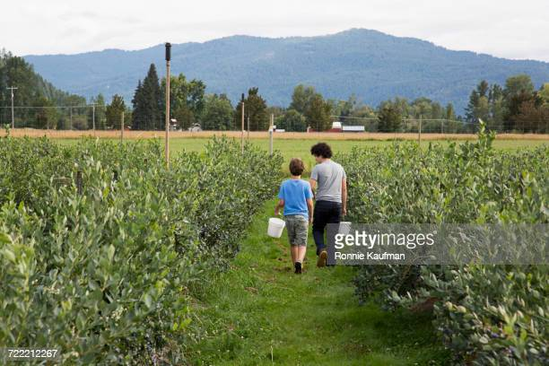 Caucasian boys carrying buckets in field