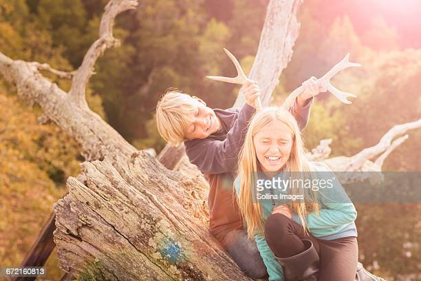 Caucasian brother and sister playing with antlers on tree