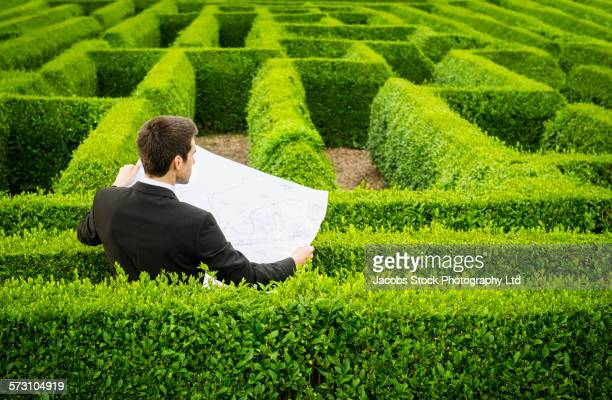 Caucasian businessman reading map in hedge maze