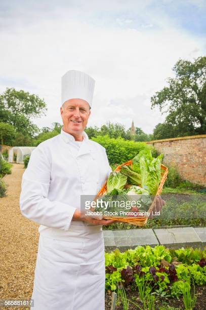 Caucasian chef gathering vegetables in garden