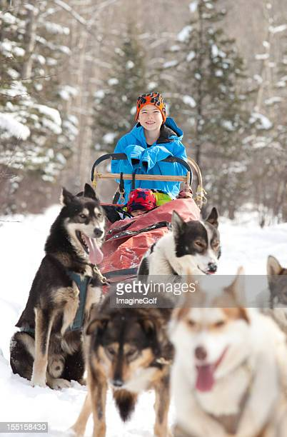Caucasian child sits in Siberian Husky-drawn sled