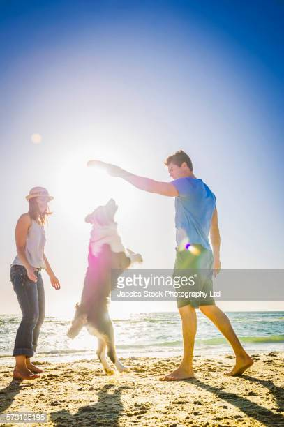 Caucasian couple playing with dog on beach