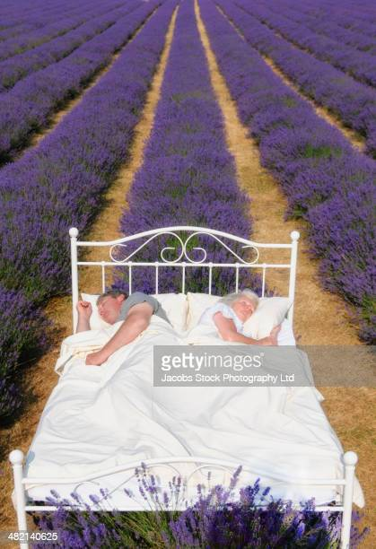 Caucasian couple sleeping in bed in lavender field