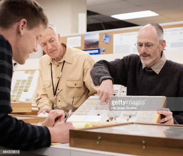 Caucasian curator and student examining bug specimens
