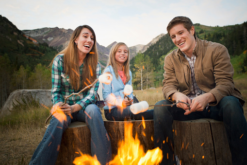 Roasted Stock Photos and Pictures | Getty Images