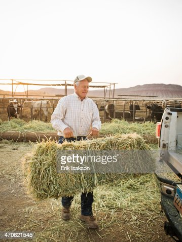 Caucasian farmer carrying hay bale