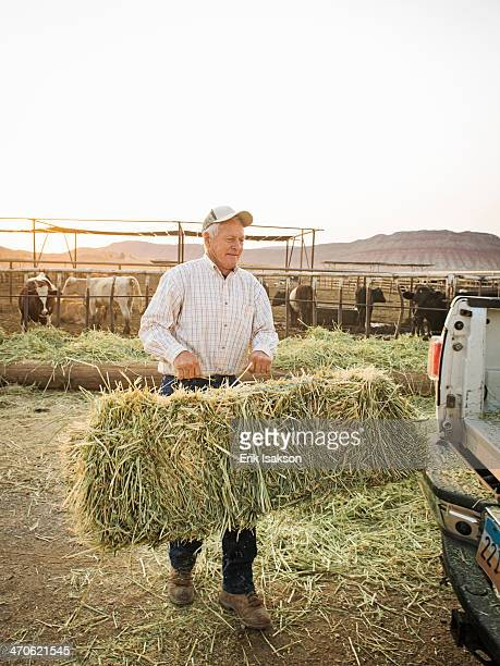 Caucasian farmer carrying hay bale