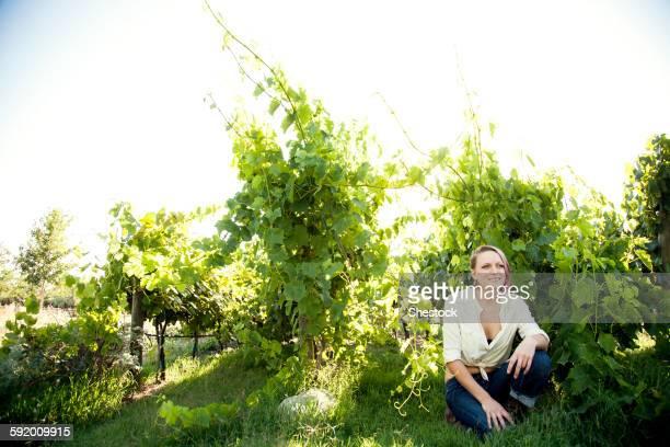 Caucasian farmer crouching in rural vineyard