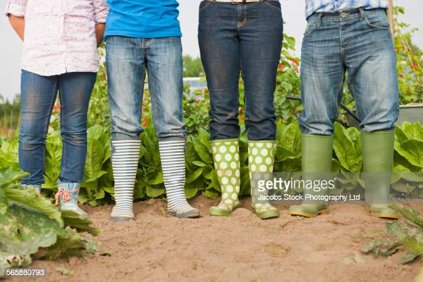 Caucasian farmer family wearing rain boots in farm fields