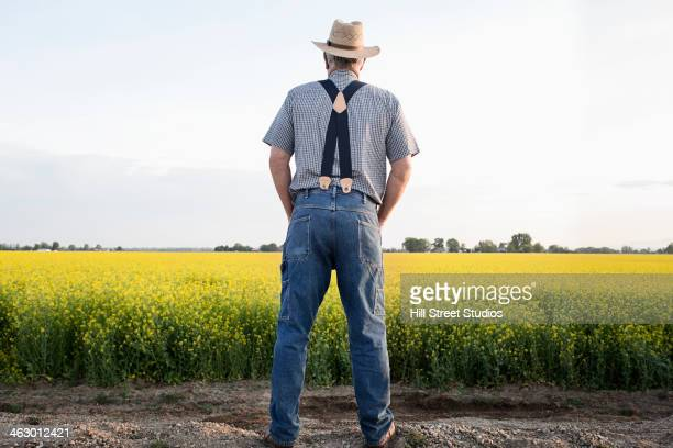 Caucasian farmer looking at mustard crop