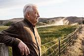 Caucasian farmer looking over fields