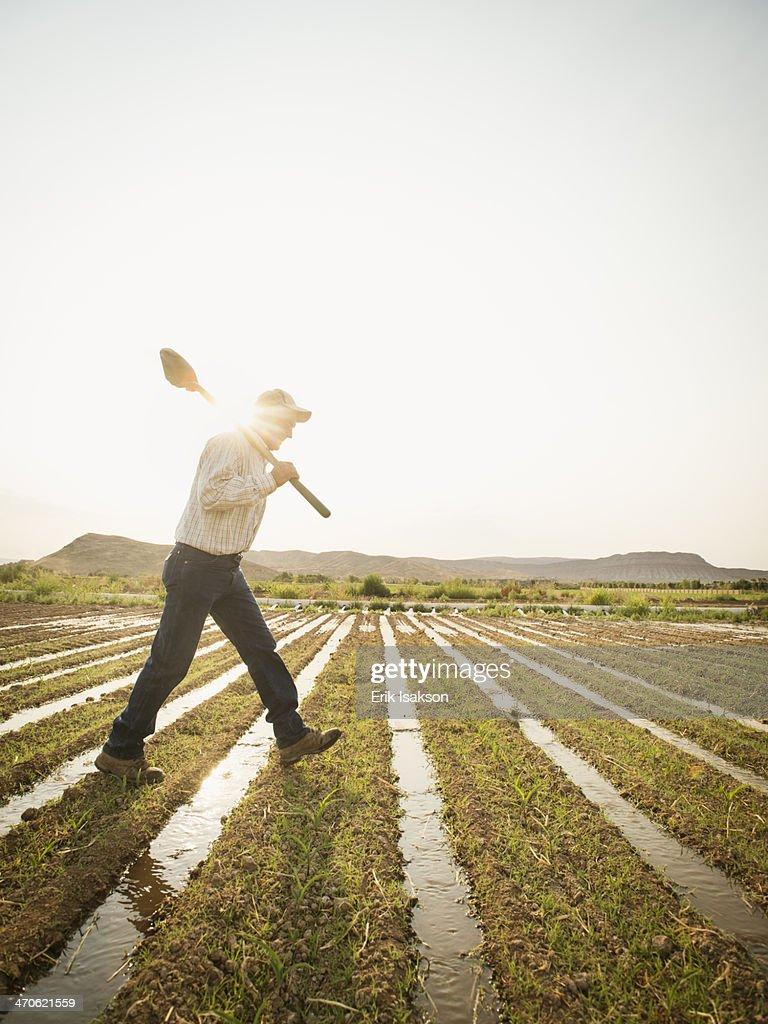 Caucasian farmer walking in crop field