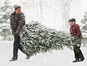Caucasian father and son carrying Christmas tree through the snow