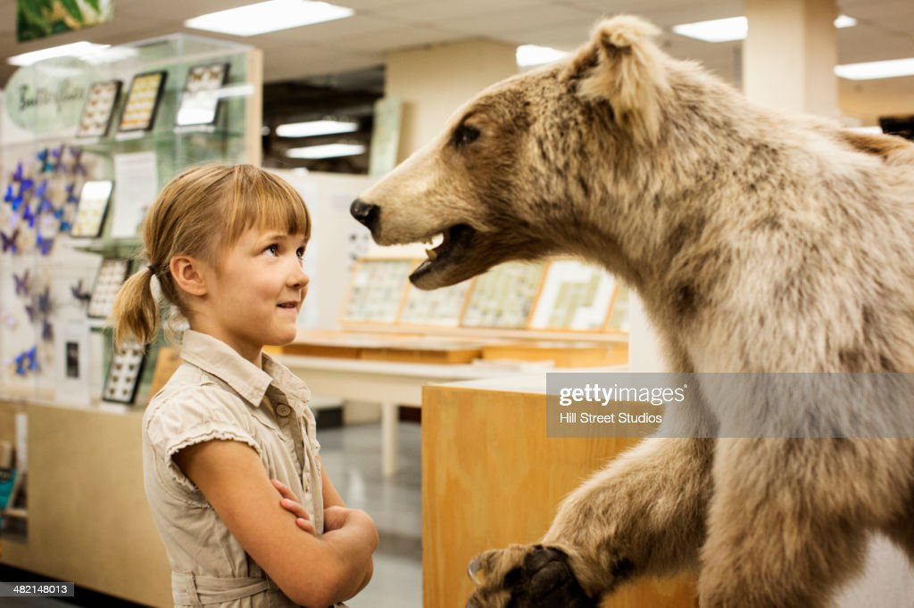 Caucasian girl examining stuffed bear in museum