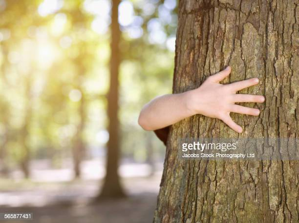 Caucasian girl hugging tree in forest