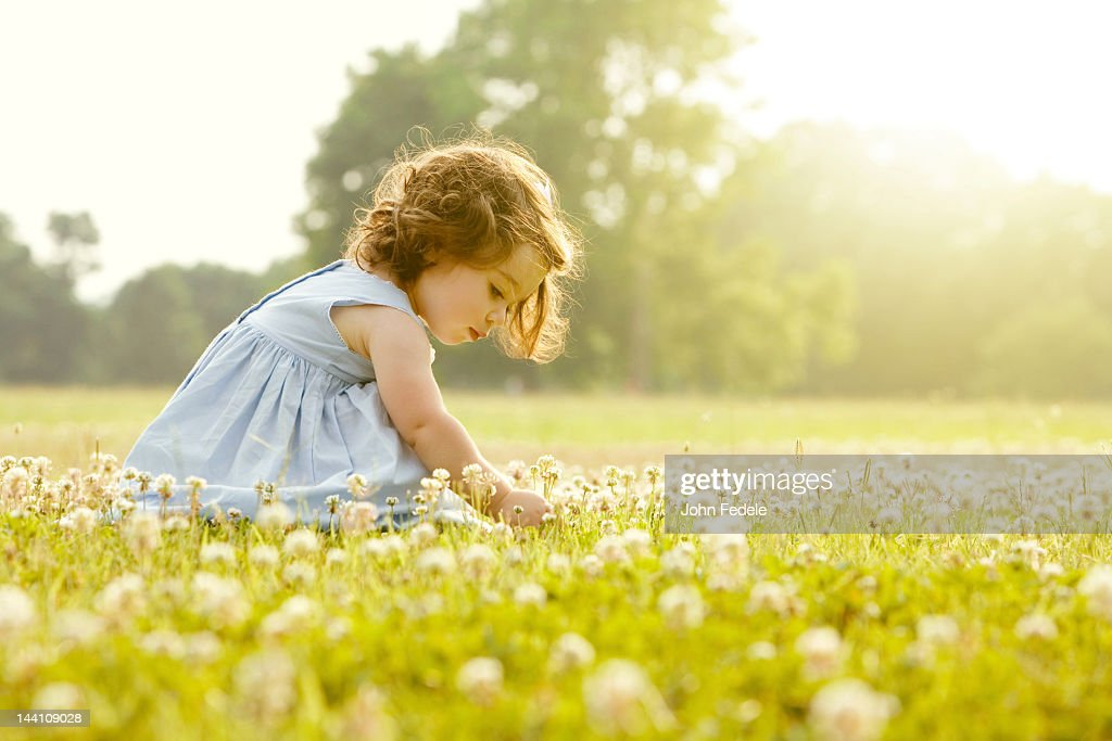 Caucasian girl picking flowers in field : Stock Photo