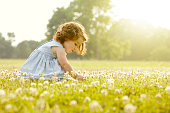 Caucasian girl picking flowers in field
