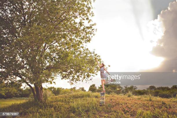 Caucasian girl picking fruit in orchard