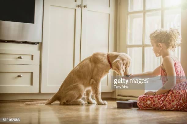Caucasian girl sitting on kitchen floor feeding dog