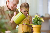 Caucasian grandfather watching granddaughter watering plants