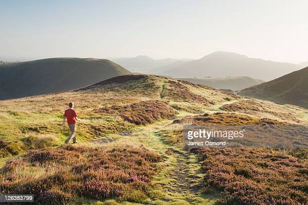 Caucasian Male Walker (30 Years Old) on the Long Mynd. Shropshire. England. UK.