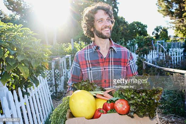 Caucasian man harvesting vegetables in garden