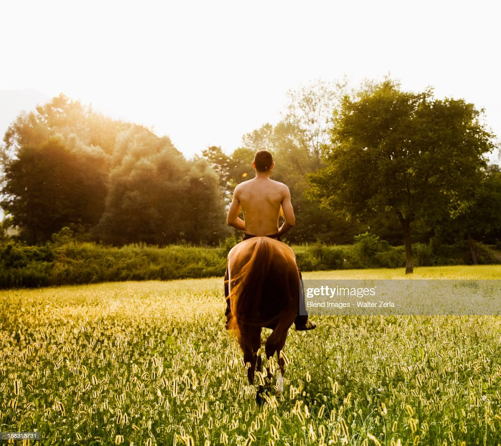 Caucasian man riding horse in field : Stock Photo