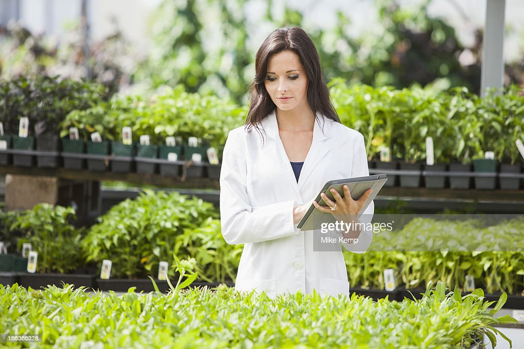 Caucasian scientist working in greenhouse