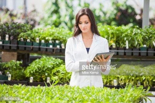 Caucasian scientist working in greenhouse