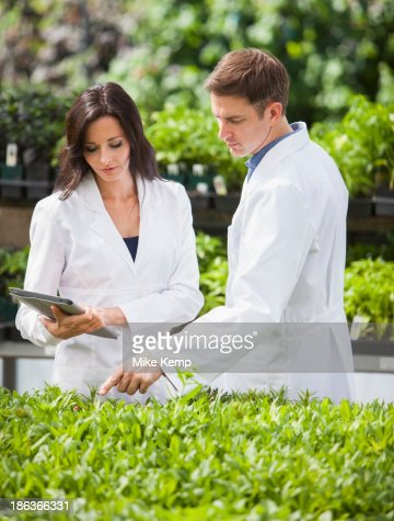 Caucasian scientists working in greenhouse