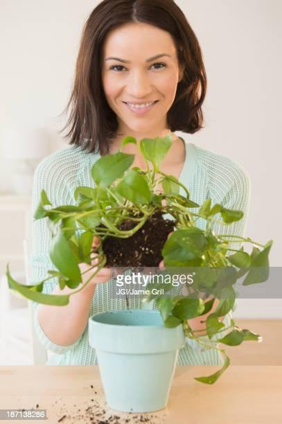 Caucasian woman depotting plant