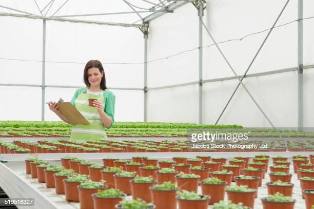 Caucasian woman examining plants in greenhouse