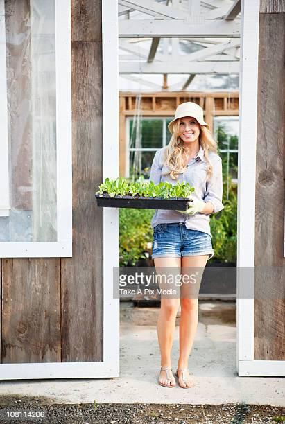 Caucasien femme tenant un plateau de plantes