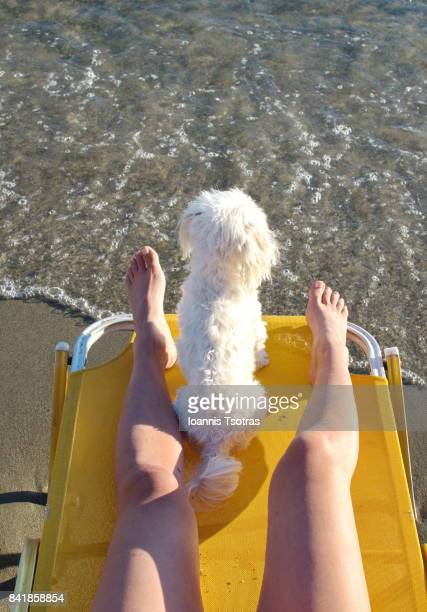 Caucasian woman laying in beach chaise lounge with dog