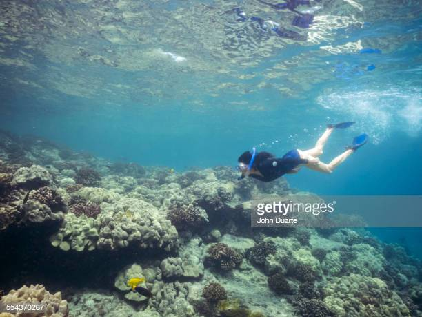 Caucasian woman snorkeling near coral reef in tropical ocean
