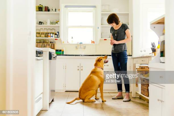 Caucasian woman training dog in kitchen
