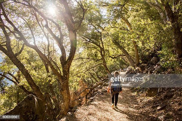 Caucasian woman walking in forest