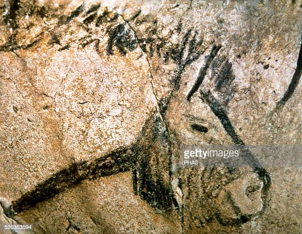 the upper paleolithic period and art Endless resurrection: art and ritual in the upper paleolithic ariela steif this honors thesis presented to the department of the history of art.