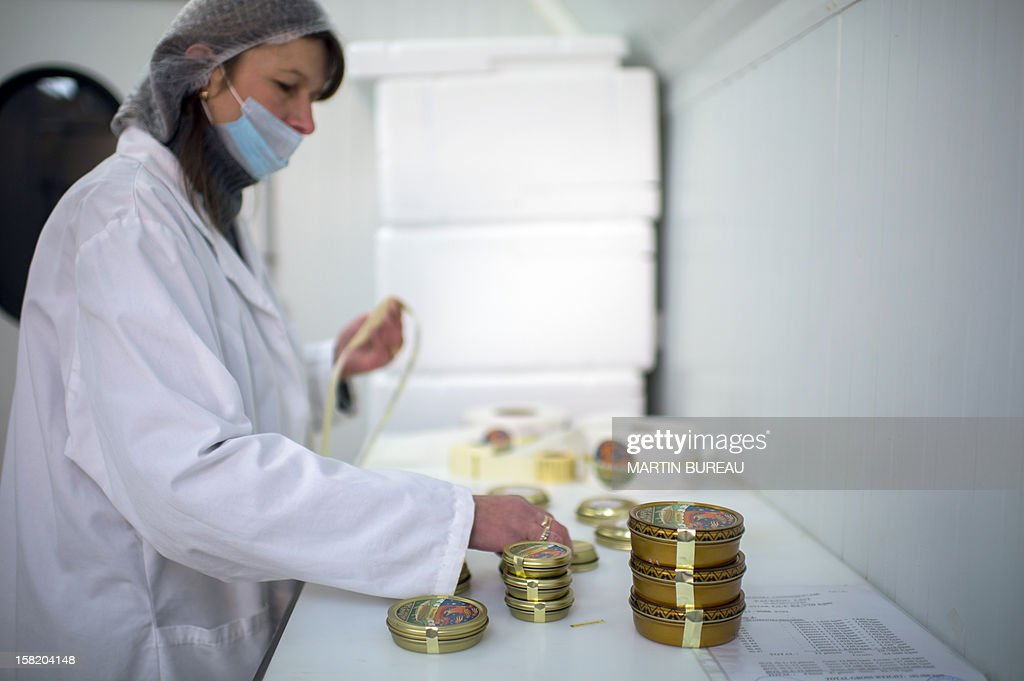 Caviar master of Kaspia Caviar, Valerie Maia, fill boxes with Bulgarian caviar in the lab of Kaspia Caviar, on December 11, 2012 in Paris.