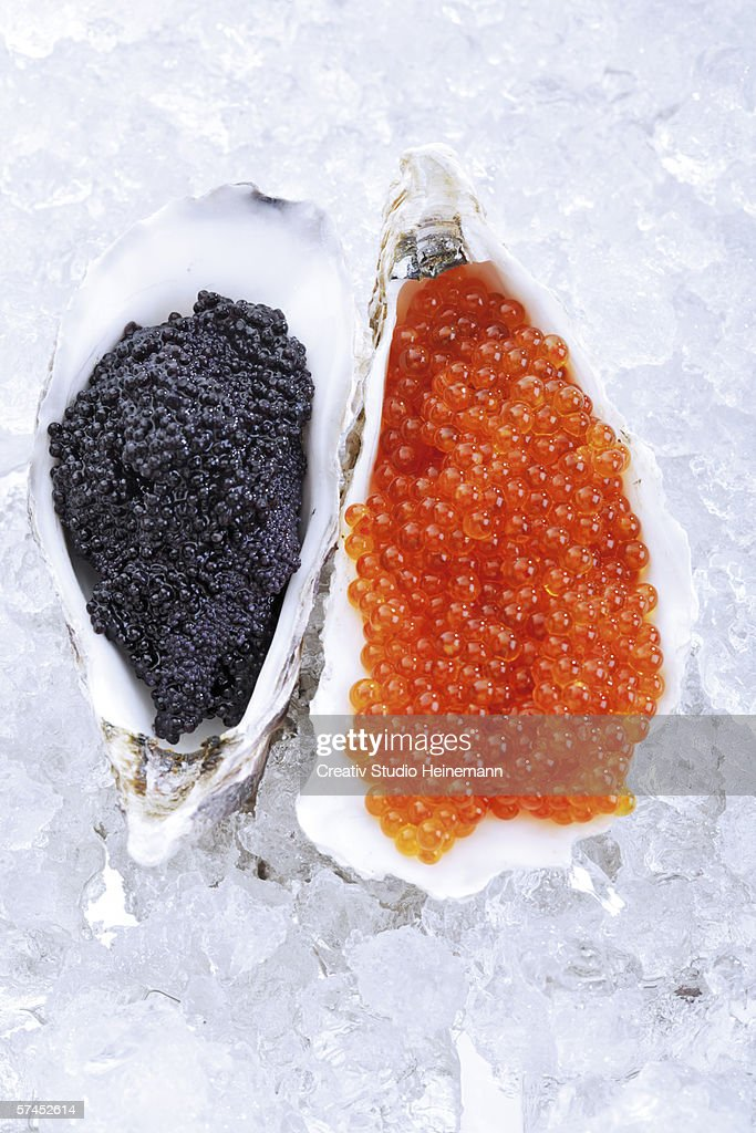 Caviar on ice, elevated view