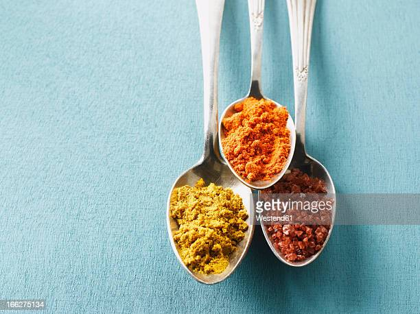 Cayenne pepper, Curry powder and rock salt on spoons, elevated view