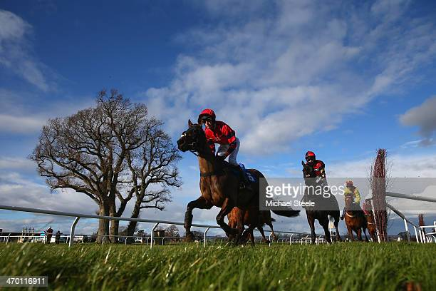 Ceasar Milan ridden by Harry Derham on his way to winning the Bathwick tyres Taunton Novices' Handicap Hurdle Race at Taunton Racecourse on February...