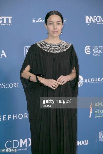 Ceci Suarez poses during during the 59th Ariel Awards Red Carpet at Palacio de Bellas Artes on July 11 2017 in Mexico City Mexico
