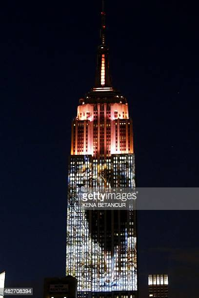 Cecil the lion from Zimbabwe that was killed by an American Dentist is seen on the Empire State Building in the 'Projecting Change on the Empire...