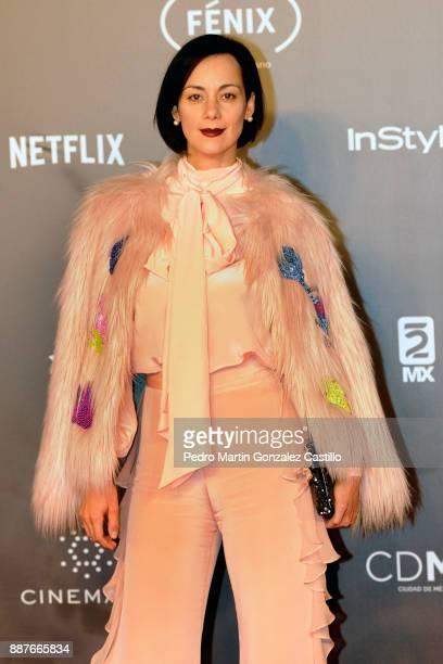Cecilia Suarez poses during Fenix Iberoamerican Film Awards 2017 at Teatro de La Ciudad on December 06 2017 in Mexico City Mexico