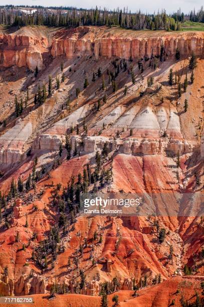 Cedar Breaks National Monument, Dixie National Forest, Utah, USA
