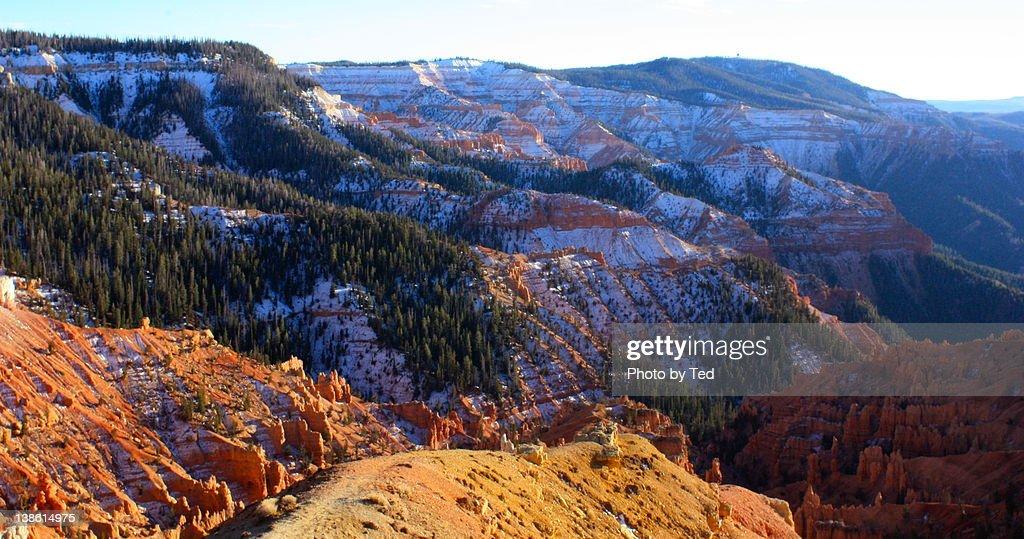 Cedar Breaks National Monument : Stock Photo