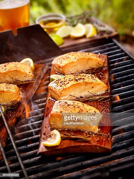 Cedar Plank filetti di salmone su un barbecue all'aperto
