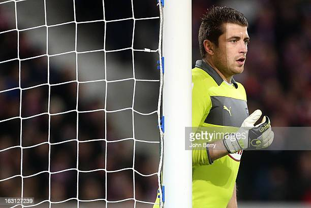 Cedric Carrasso goalkeeper of Bordeaux in action during the french Ligue 1 match between Lille LOSC and FC Girondins de Bordeaux at the Grand Stade...