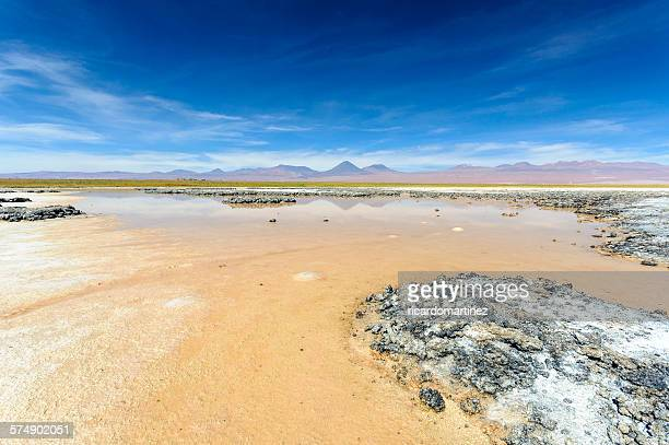 Cejar lagoon with Licancabur volcano in the background, Chile